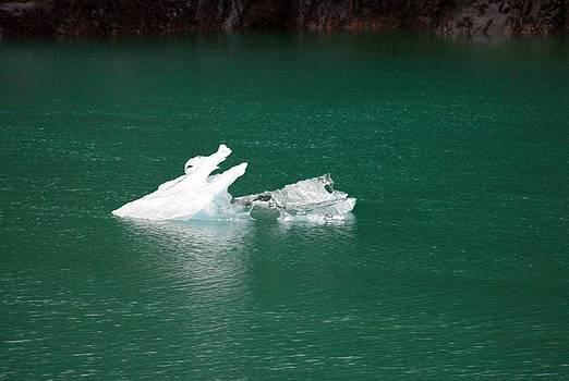 Marilyn Wilson - Iceberg