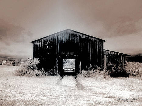 Darlene Bell - Iced Barn
