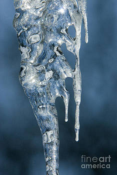 Sandra Bronstein - Icicle Formation