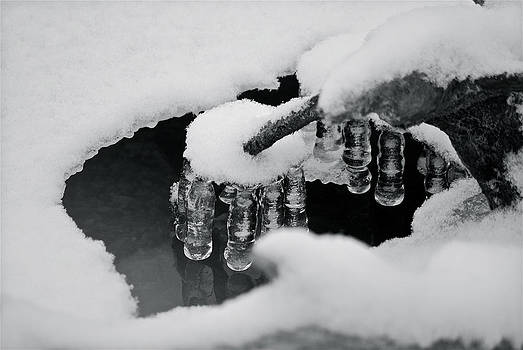Michael Peychich - Icicles 2324