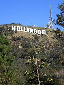 Iconic Hollywood Sign Against Blue Sky by Eve Paludan