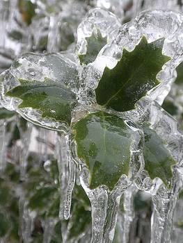 Icy  by Beth Dennis
