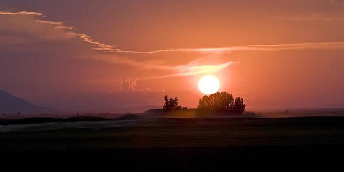 Idaho Sunset by Ramona Murdock