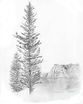 Jim Hubbard - Idaho-Western White Pine