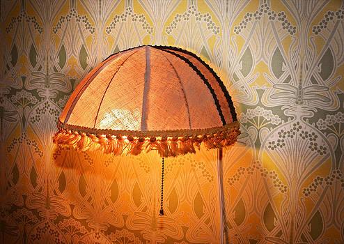 Illumination by Susan Leggett