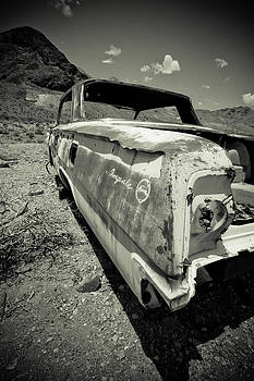 Impala by Merrick Imagery