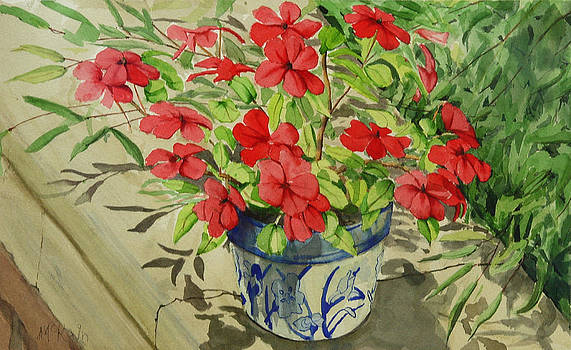 Impatiens by Mark McKain