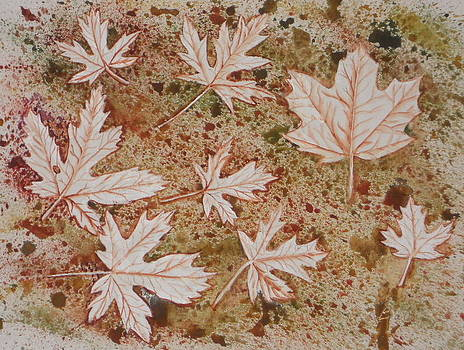 Impressions of Maple Leaves by DJ Bates