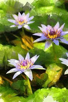 In botanical garden by Boguslaw Florjan