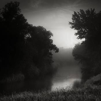 In Floodplain Forest by Jaromir Hron