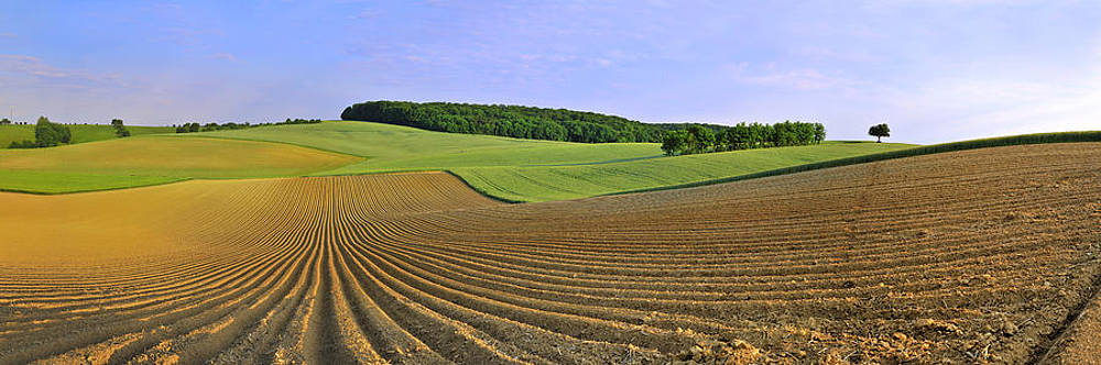 In the fields by Travel Images Worldwide