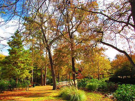 In the park by Evgeniya Bearden