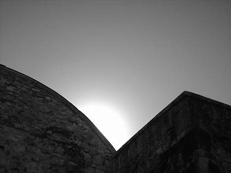 In The Shadows Of The Alamo by Michaelle Beasley
