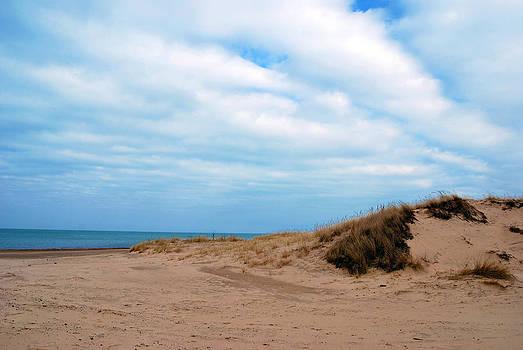 Indiana Dunes by Lora Mercado