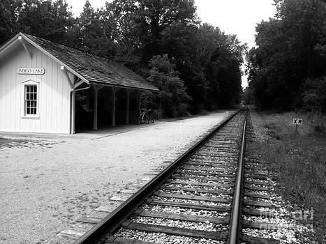 Indigo Rails by Trish Hale