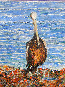 Christy Usilton - Inlet Pelican