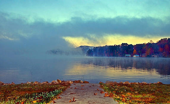 Into the Fog by Susan Leggett