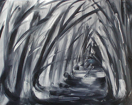 Into the Nighttime Woods by Patricia Frankel