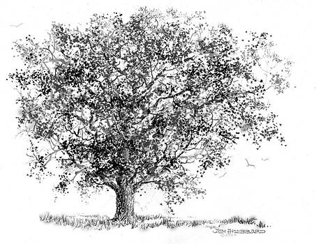 Jim Hubbard - Iowa-Bur Oak