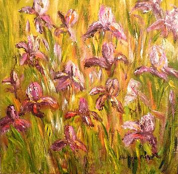 Irises by Barbara Pirkle