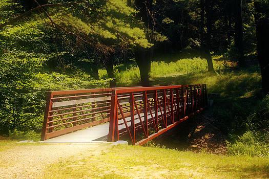 Darlene Bell - Iron Bridge