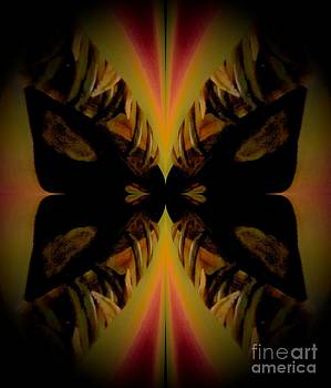 Is it a butterfly? by Charleen Treasures