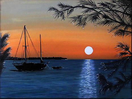 Islamorado Sunset by Ann Iuen