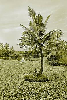 Kantilal Patel - Island of Hindu God Varun