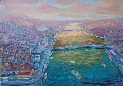 Istanbul Golden Horn by Yavuz Saracoglu