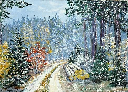 It is snowing - 2 by Stanislav Zhejbal