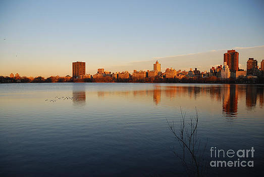 Jacqueline Kenedy Onassis Reservoir by Alan Clifford