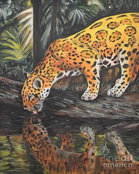 Jaguar by the Pond by Gila Churba