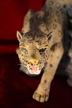 Jaguar Dream by Mark Cheney