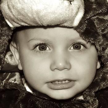 Jake The Bear by Ryan Louis Maccione