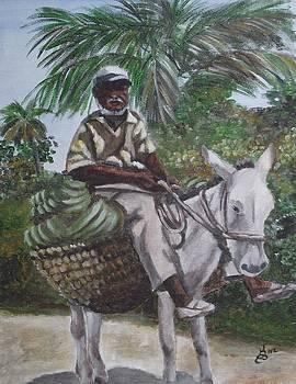 Jamaican Donkey Power by Kim Selig