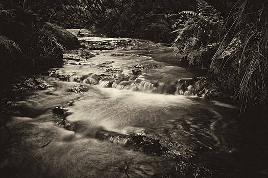 Jamison Creek by Geoff Smith