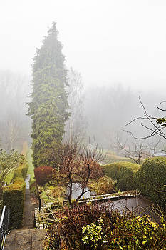 Kantilal Patel - January Mist rolling over English Gardens