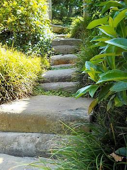 Lynnette Johns - Japanese Garden Stone Steps