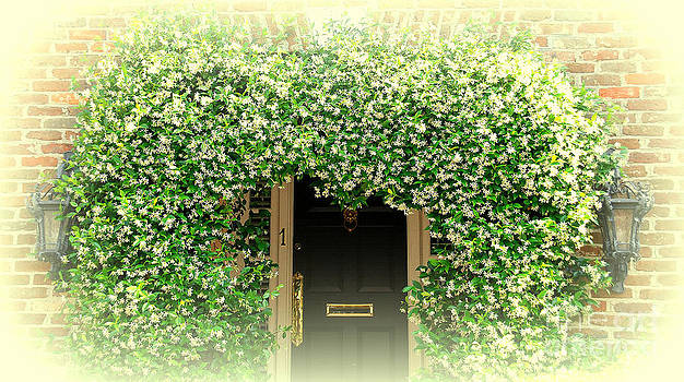 Susanne Van Hulst - Jasmine Covered House Door in Charleston SC