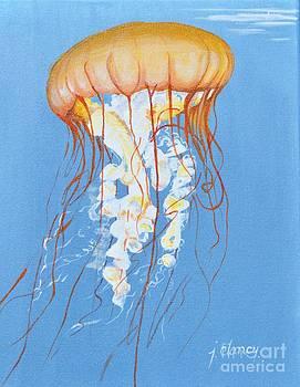 Jellyfish by Jolaine Goldman