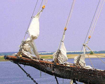 Jib Sails by Jim Ziemer