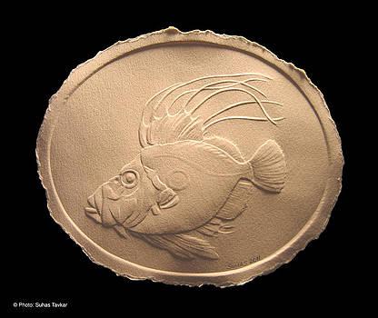 John Dory Fish by Suhas Tavkar