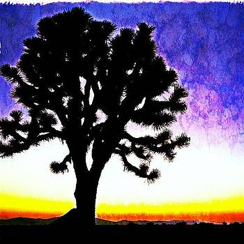 #joshua #tree #desert #sunset #waiting by Denise Taylor