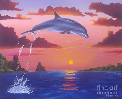 Jumping Dolphin by Michael Allen