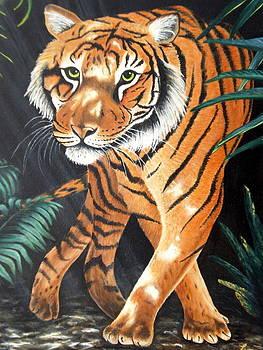 Jungle cat by Chris Law