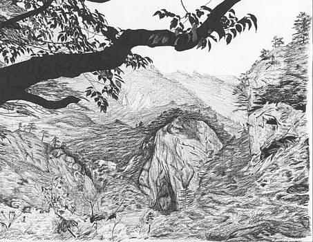Jungle mountain landscape by Reppard Powers