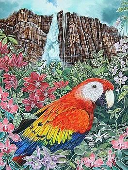 Jungle Parrot by Kimberlee  Ketterman Edgar
