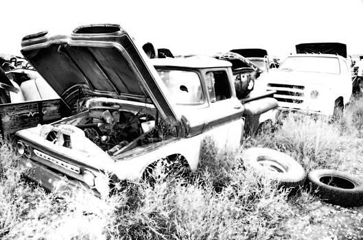 Junkyard Infrared 2 by Matthew Angelo