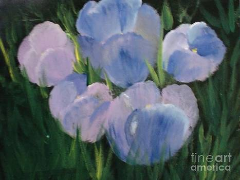 Just in Bloom by Trilby Cole