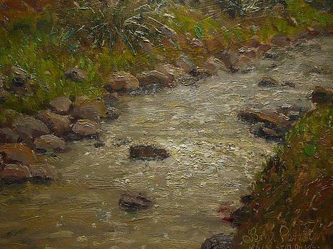 Terry Perham - Kaikorai Stream After Rain